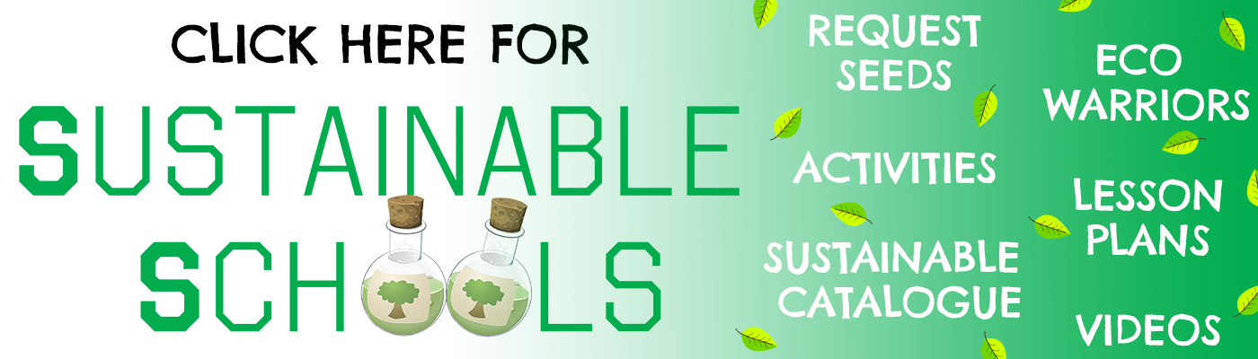 Sustainable Schools Banner