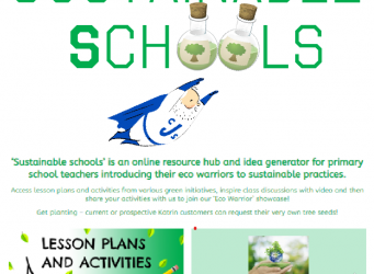 Sustainable Schools Blog Image